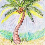 Coconut Palm by Toby Sonneman